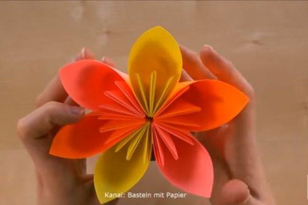 Flor de Papel de 6 Petalos